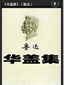 鲁迅杂文精选_鲁迅小说集,散文集-轩宇阅读网