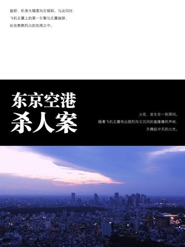 东京空港杀人案